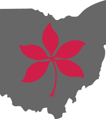 Gray Ohio Graphic with Leaf
