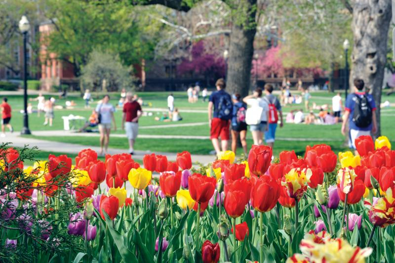 Ohio state admission essay prompt